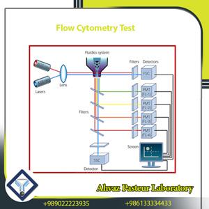 Flow Cytometry Test
