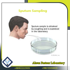 sputum sampling